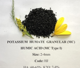 HUMIC ACID MIỄNG CHAI